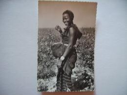 Haute Volta La Récolte Du Coton - Burkina Faso