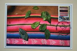 Bolivie Carte Maximum Textile Tissu Alpaca Lama Bolivia - Textile