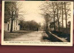 44 - Sèvre Nantes : L'Avenue De La Civelière, Entre La Route De Vertou Et De Clisson - France