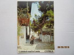 CP Cyprus  CHYPRE  - Cobbled Road In LANIA - Une Rue Pavée à LANIA > Limassol -  Vieille Femme - Chypre