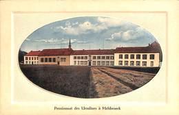 Pensionnat Des Ursulines à Melsbroeck (Willfried Deyhle's Lichtdruk, Gekleurd) - Steenokkerzeel