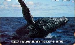 Hawaii - GTH-Pr26, Close-up Photo Of Humpback Whale, 6U, 1.500ex, Mint - Hawaii