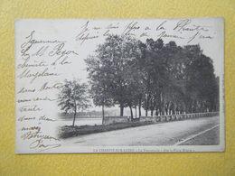 LA CHARITE SUR LOIRE. La Promenade Dite La Place Misère. - La Charité Sur Loire
