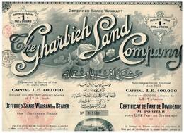 Certificat Ancien - The Gharbieh Land Company - Titre De 1906 - Afrique