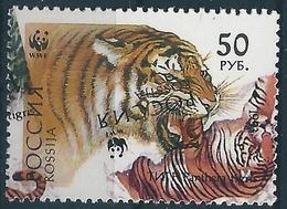 B2167 Russia Rossija Fauna Animal Cat-of-Prey Tiger (50 Rubel-500 Rubel) ERROR - 1992-.... Federation
