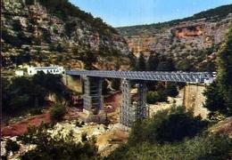 Cyrenaica - Tokra Bridge - Formato Grande Non Viaggiata – E 7 - Cartoline
