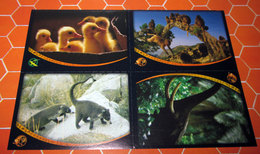 ANIMAL CHAMPIONS PANINI N. 67 - 87 - 59 - 51 - Panini