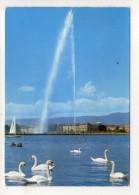 CP 10*15-WY1549-GENEVE LES CYGNES ET LE JET D EAU 1971 - GE Geneva