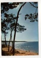 CP 10*15-WY1577-BORD DE MER PLAGE EN CHARENTE MARITIME 1974 - France