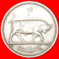 # BULL (1951-1968): IRELAND ★ 1 SHILLING 1963! LOW START ★ NO RESERVE! - Ireland