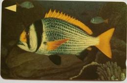 39BAHT 200 Units Fish - Bahrain