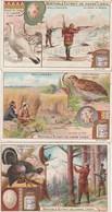 Série De 6 Chromos LIEBIG Gallinacés Neufs - 001 - Liebig