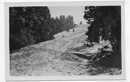 MONT PILAT - LES CHAMPS DE NEIGE AU PILAT - FORMAT CPA NON VOYAGEE - Mont Pilat