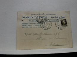 SAONARA   --- PADOVA  ---   MARIO DAINESE    --   STABILIMENTO DI ORTICOLTURA - Padova (Padua)