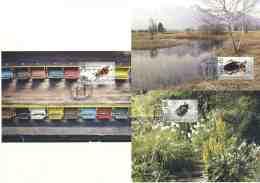 5188  Scarabée: 3 C. Maximum 1er Jour Liechtenstein, 2007 - Set Of 3 Beetle Maximum Cards. Bug Bee Clairon Des Abeilles - Otros
