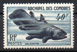 Col10 / Comores Archipel : N° 13 Neuf X MH , Cote : 30,00 € - Comores (1950-1975)