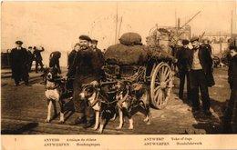 1912 Antwerpen  Hondenkar,  Die Boer Komt Van De Overzetboot En Gaat Naar De Markt  In 't Stad, Practige Kaart - Antwerpen