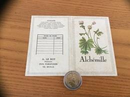 """Calendrier 1977 """"A. LE BOT PORSPODER (29) / Alchémille (plante)"""" - Calendars"""