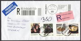 Monkey Chimpanzee / Austria St, Martin - Personal Stamp / Food Soup / Registered Priority Mail Cover - Chimpanzés