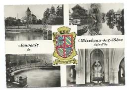 21 - Souvenir De  MIREBEAU-SUR-BEZE - VUES - CPSM - Mirebeau
