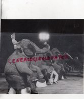 CIRQUE - TROUPEAU ELEPHANTS DE BILLY WILSON SMART-CIRQUE PINDER JEAN RICHARD -PHOTO ORIGINALE 1981 - Mestieri