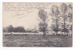 77 OISSERY Vers Meaux N°637 1 Les Prés Et La Chaussée Troupeau De Vaches Vers St Pathus - Meaux
