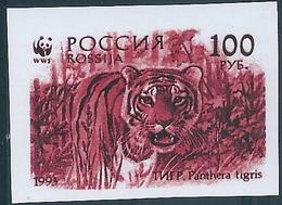 B2209 Russia Rossija Fauna Animal Cat-of-Prey Tiger (100 Rubel) Colour Proof - 1992-.... Federación
