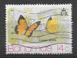 PAPILLON - BUTTERFLY - Eurema Nicippe 1975 (o) - Bahamas (1973-...)