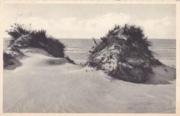 Oostduinkerke Bad, Als Een Schildwacht Aan De Zee (pk49960) - Oostduinkerke