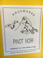 8808 -  Cervin  Hausmarke Suisse Pinot Noir & Chasselas 2 étiquettes - Montagnes