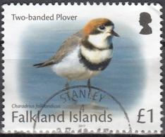 Falkland Islands 2017 Pluvier O Cachet Rond - Falkland Islands