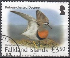 Falkland Islands 2017 Pluvier Guignard O Cachet Rond - Falkland