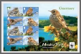H01 Guernsey 2017 WWF Meadow Pipit Birds MNH Postfrisch - Guernesey