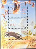 Kazakhstan, 2006, Mi. 574-76 (bl. 37), Sc. 546, Birds, Swans, Flamingo, Animals, MNH - Flamingo