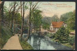 °°° 11704 - UK - STEPPING STONES , JESMOND DENE , NEWCASTLE ON TYNE - 1911 With Stamps °°° - Newcastle-upon-Tyne
