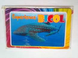 Experience Bicol - Transports