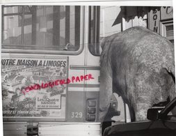 87 - LIMOGES- CIRQUE  AMERICAN CIRCUS LES ELEPHANTS- ELEPHANT E TROLLEY-PUB LES QUATRE SAISONS 163 RUE SOLIGNAC-1984 - Métiers
