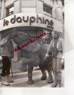 38- 73-74- GRENOBLE- VEUREY VOROIZE- ELEPHANT DU CIRQUE RANCY DEVANT LE DAUPHINE LIBERE LE 28-12-1983 - Métiers