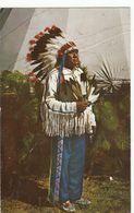 Cp , INDIENS D'AMÉRIQUE DU NORD , Indian Chief - Indiens De L'Amerique Du Nord