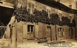 808 -   Ain - VERIZIEU  : Lucien BERLIAT ,  ETABLISSEMENTS DE VITICULTURE  (disparu ??)   TRES RARE - Other Municipalities