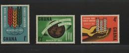 LOT 507  - GHANA   N° 124/126 - CAMPAGNE MONDIALE CONTRE LA FAIM - EPI DE BLE - Contro La Fame