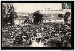 CPA ANCIENNE FRANCE- PLOËRMEL (57)- PLACE DE LA MAIRIE UN JOUR DE FOIRE- TRES BELLE ANIMATION- BESTIAUX- - Ploërmel