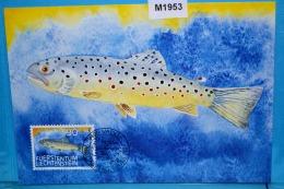 M1953 FDC Bachforelle, Salmo Trutta Fario, Forelle, Fario, Salmo Trutta, Truite, Trucha, Trota, Fisch, Fish, FL 1987 - Cartes-Maximum (CM)