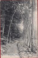 Groenendael Hoeilaart Sous Bois 1907 (En Très Bon Etat) (In Zeer Goede Staat) - Hoeilaart