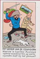 Het Geheim Van De Eenhoorn Kuifje En Bobbie Haddock Tintin Et Milou Reclamekaartje Strip Stripfiguur Bande Dessinée BD - Collections