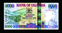# # # Banknote Uganda 5.000 Shillingi UNC # # # - Ouganda