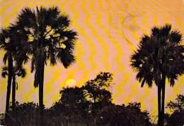 NAMIBIE Namibia ( SWA ) Sunset / Soleil Couchant / Sonnenuntergang / CPSM GF 1984 - Black Africa AFRIQUE Noire - Namibia