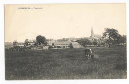 Senzeilles Panorama Carte Postale Ancienne Senzeille Vue Générale Cerfontaine - Cerfontaine