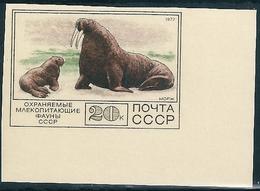 B2242 Russia USSR Fauna Animal Marine Life Mammal Colour Proof - Preserve The Polar Regions And Glaciers