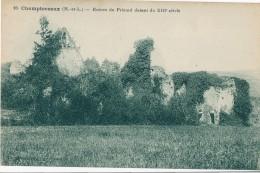 CHAMPTOCEAUX - 49 - Ruinesdu Prieuré - Champtoceaux